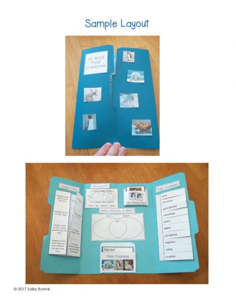 Polar Animals Lapbook 1