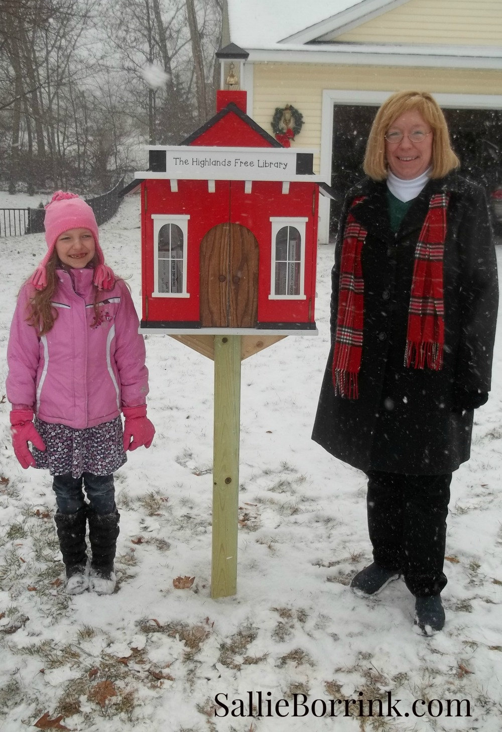 Little Red Schoolhouse Free Library 2