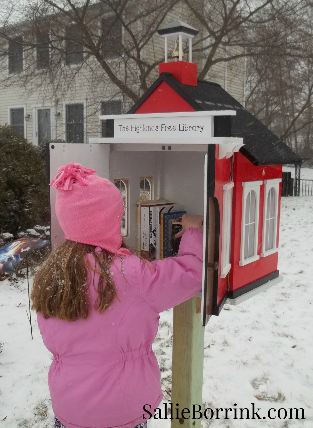 Little Red Schoolhouse Free Library 3