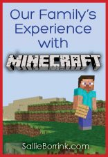 Our Family's Experience with Minecraft