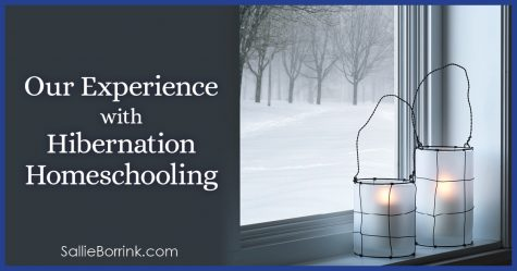 Our Experience with Hibernation Homeschooling 2