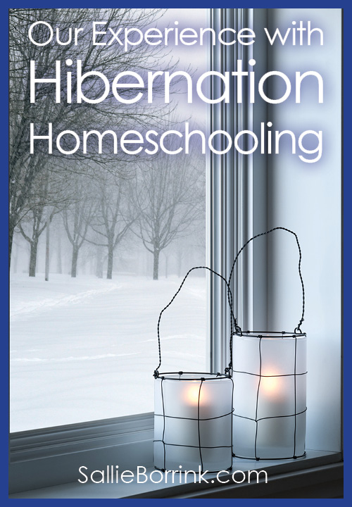 Our Experince with Hibernation Homeschooling