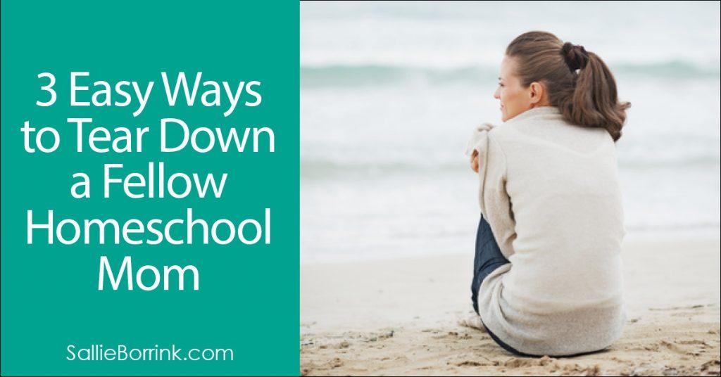 3 Easy Ways to Tear Down a Fellow Homeschool Mom 2