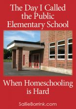 The Day I Called the Public Elementary School - When Homeschooling is Hard
