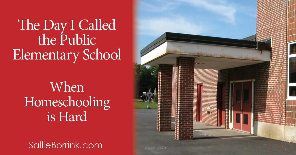 The Day I Called the Public Elementary School - When Homeschooling is Hard 2