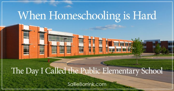 When Homeschooling is Hard - The Day I Called the Public Elementary School 2