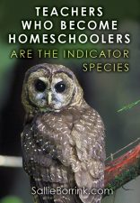 Teachers who become homeschoolers are the indicator species