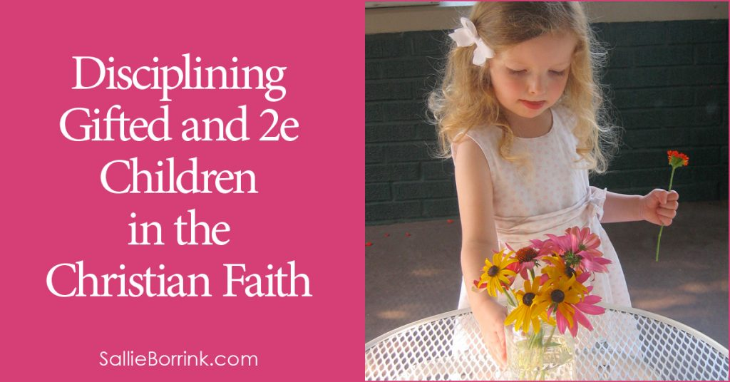 Disciplining Gifted and 2e Children in the Christian Faith 2