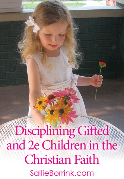 Disciplining Gifted and 2e Children in the Christian Faith