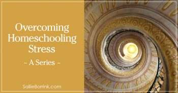 Overcoming Homeschooling Stress - A Series 2
