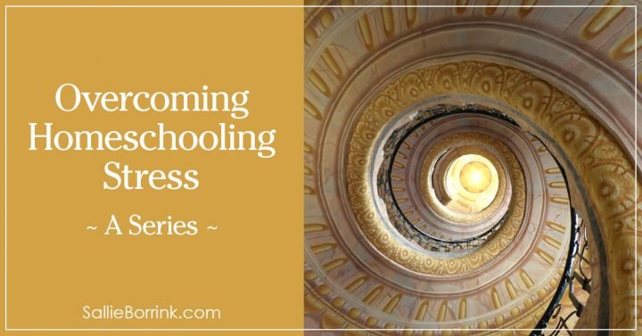 Overcoming Homeschooling Stress - A Series 2