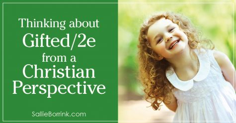 Thinking about Gifted 2e from a Christian Perspective 2