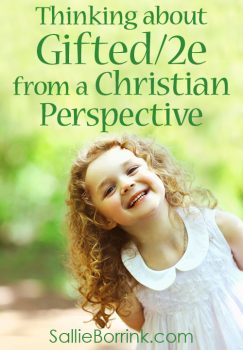Thinking about Gifted/2e from a Christian Perspective