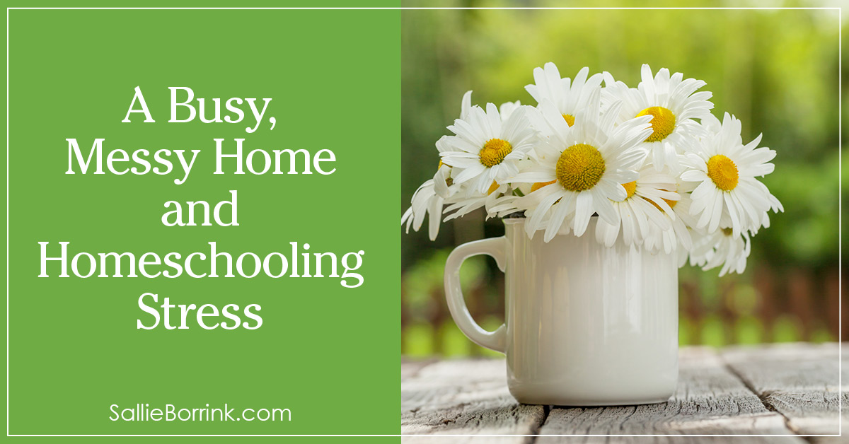 A Busy, Messy House and Homeschooling Stress 2