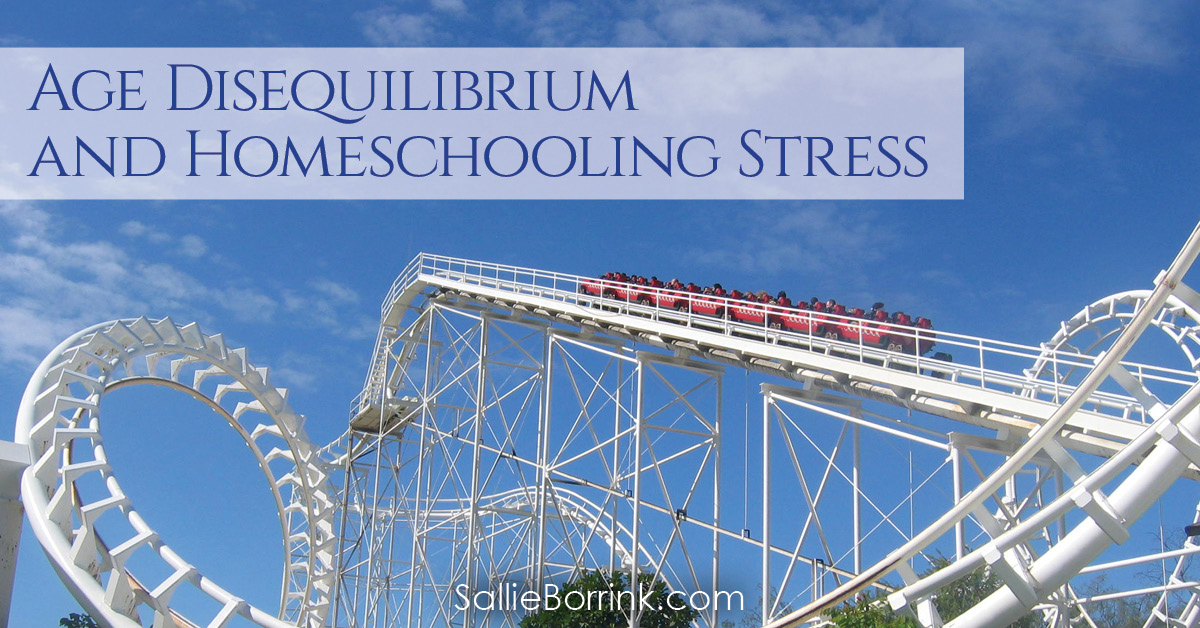Age Disequilibrium and Homeschooling Stress 2