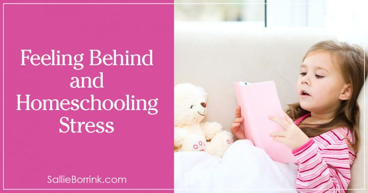 Feeling Behind and Homeschooling Stress 2