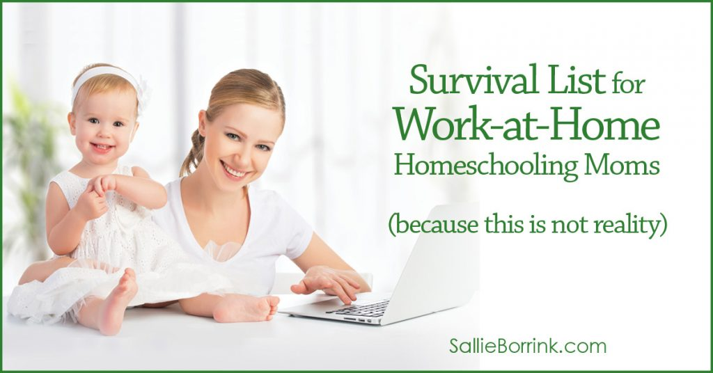 Survival List for Work-at-Home Homeschooling Moms 2