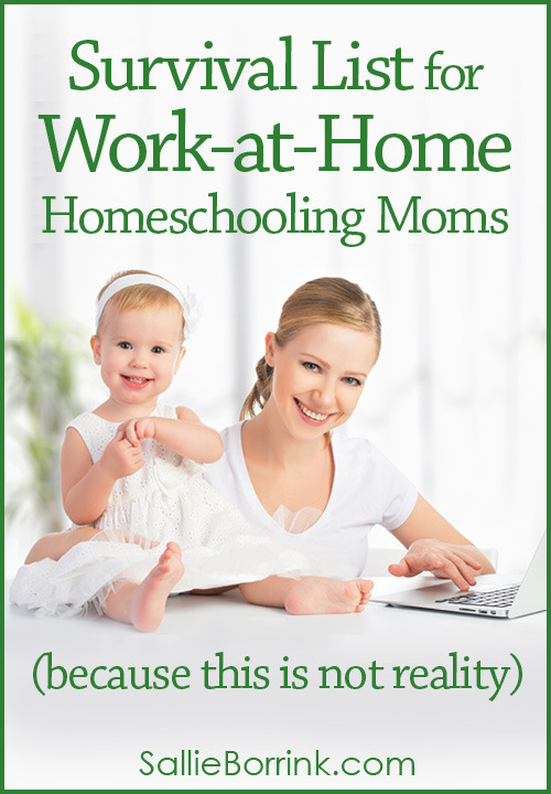 Survival List for Work at Home Homeschooling Moms