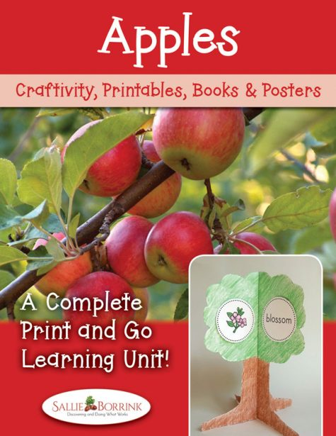 Apples Unit with Craftivity