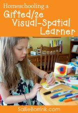 Homeschooling Curriculum for Gifted/2e Visual-Spatial Learners