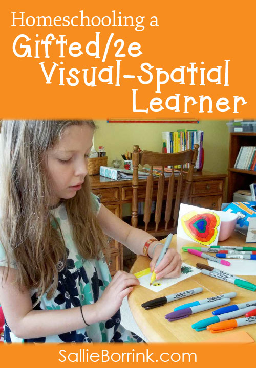 Homeschooling Curriculum Plan for a Gifted_2e Visual Spatial Learner