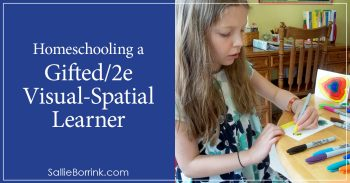 Homeschooling a Gifted2e Visual-Spatial Learner 2
