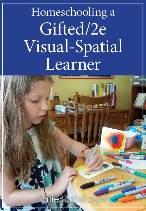 Homeschooling a Gifted2e Visual-Spatial Learner