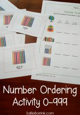 Number Ordering Activity 0-999