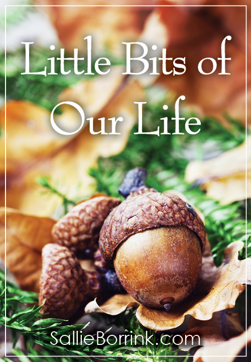 Little Bits of Our Life