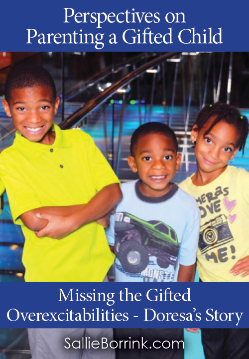 Missing the Gifted  Overexcitabilities - Doresa's Story
