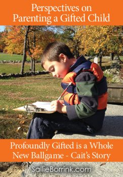Profoundly Gifted is a Whole New Ballgame – Cait's Story