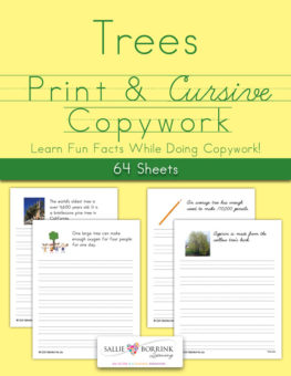 Trees Fun Facts Copywork