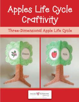 Apples Craftivity
