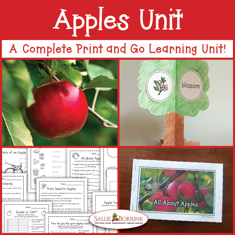 Apples - A Complete Print and Go Unit