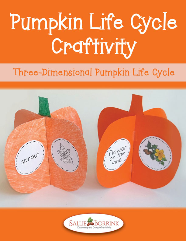 Pumpkins Life Cycle Craftivity