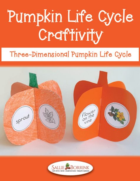 Pumpkins Craftivity