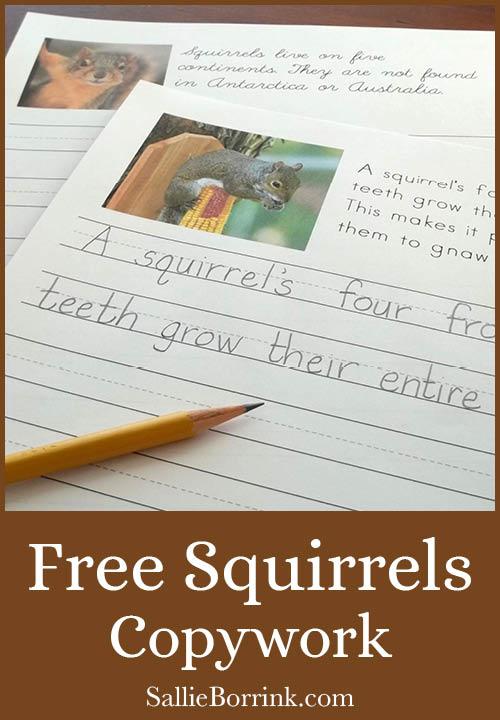 Squirrels Copywork