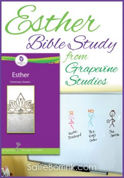 Esther Bible Study from GrapeVine Studies