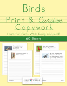 Birds Copywork – Print and Cursive