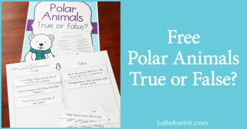 Free Polar Animals True or False 2