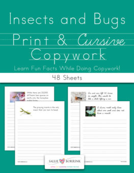Insects and Bugs Fun Facts Copywork
