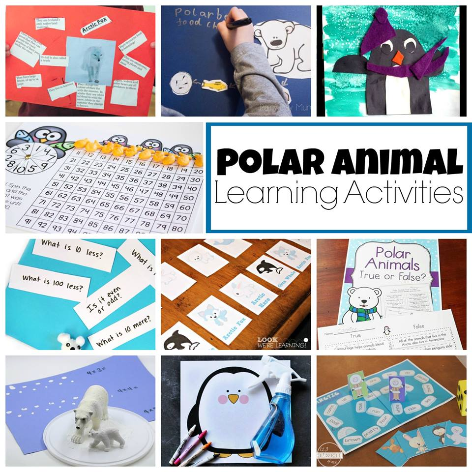 Polar Animals Learning Activities