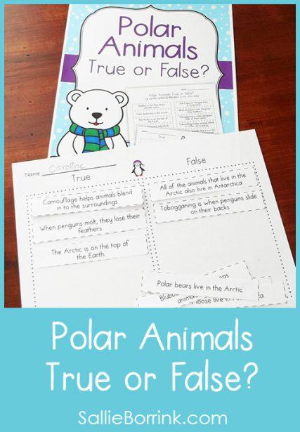 Polar Animals Activity