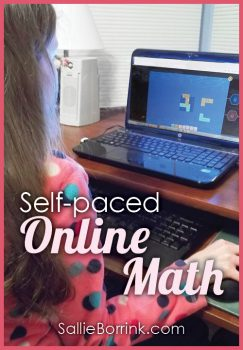 Self-paced Online Math with Redbird Mathematics