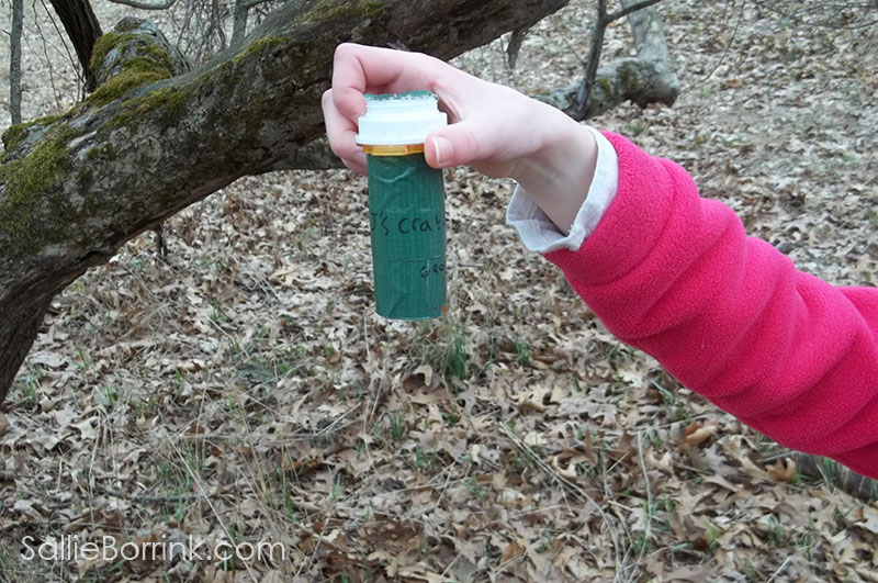 geocaching small capsule from apple tree