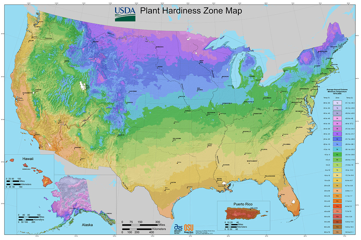 2012 USDA Plant Hardiness Zone Map (USA) 1200
