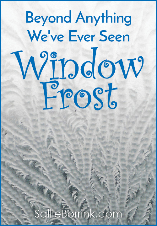 Beyond Anything We've Ever Seen - Window Frost