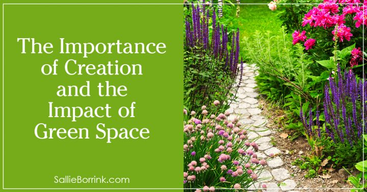The Importance of Creation and the Impact of Green Space 2
