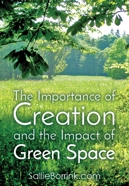 The Importance of Creation and the Impact of Green Space
