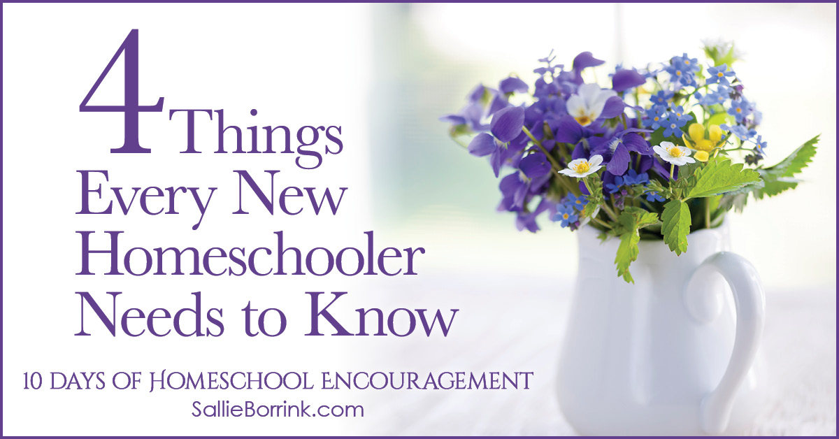4 Things Every New Homeschooler Needs to Know 2